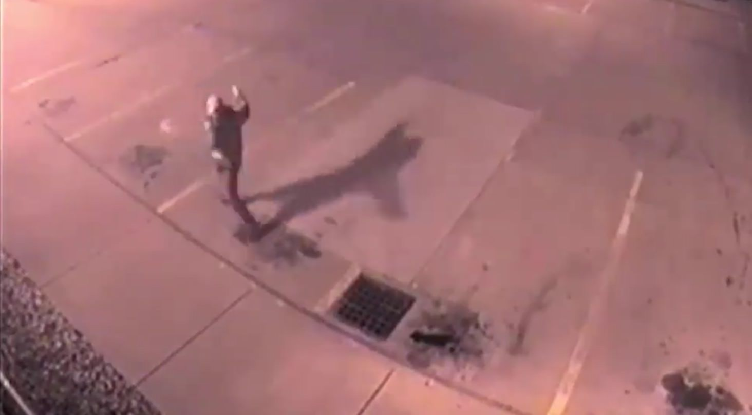 Video released of suspect in vandalism near Southern Hills Mall