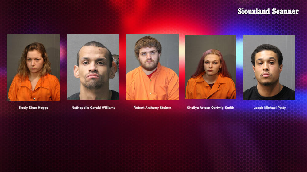 Five arrested after breaking into Sloan apartment taking a dog and money