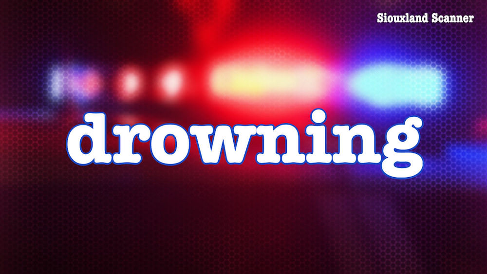 Two juveniles transported to hospital after near drowning at Browns Lake